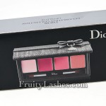 Dior Celebration Collection Makeup Palette For The Lips Box 1