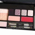 Dior Holiday 2011 Celebration Collection Multi-Look Palette
