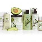 CRABTREE & EVELYN Avocado, Olive & Basil Collection
